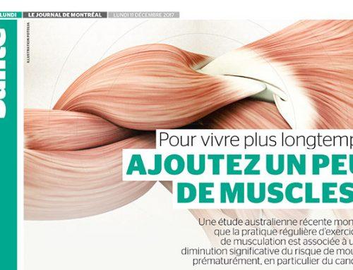 Pour vivre plus longtemps, ajoutez un peu de muscles!