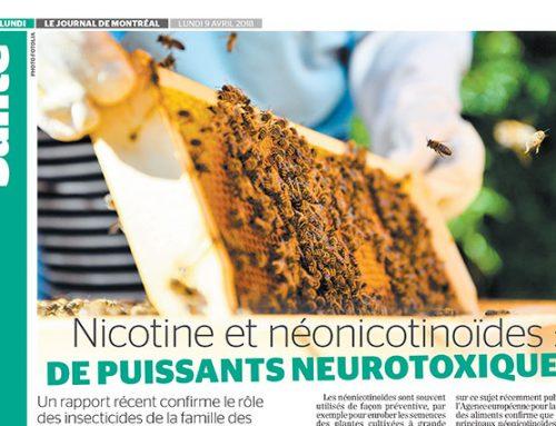 Nicotine et néonicotinoïdes : de puissants neurotoxiques