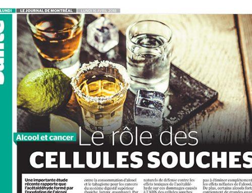 Alcool et cancer : le rôle des cellules souches