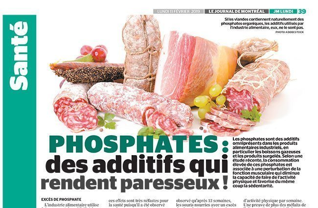 Chroniques - Phosphates: additives which make you lazy