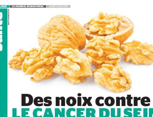 Des noix contre le cancer du sein