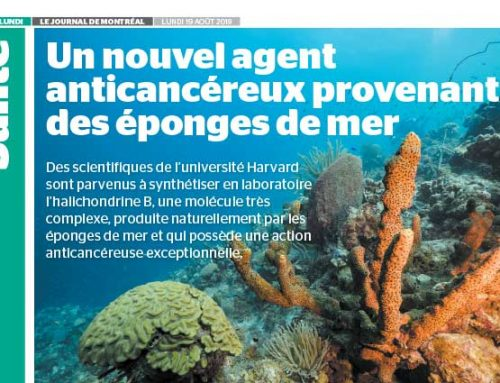 A New Anticancer Agent Derived from Sea Sponges