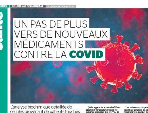 Un pas de plus vers de nouveaux médicaments contre la COVID