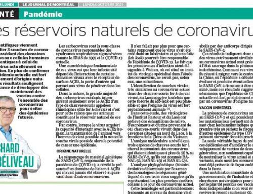 Les réservoirs naturels de coronavirus
